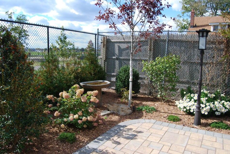 Landscaping renovations wiesner bros nursery inc for Landscape renovations