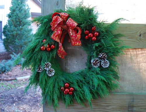 Seasonal Hours and Holiday Decor
