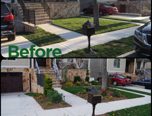 Five considerations when deciding to landscape your home