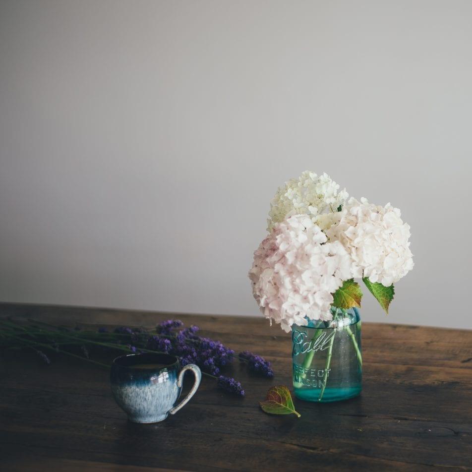 ENJOY YOUR HYDRANGEA FLOWERS YEAR ROUND